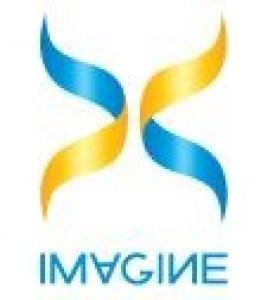 Imagine-X